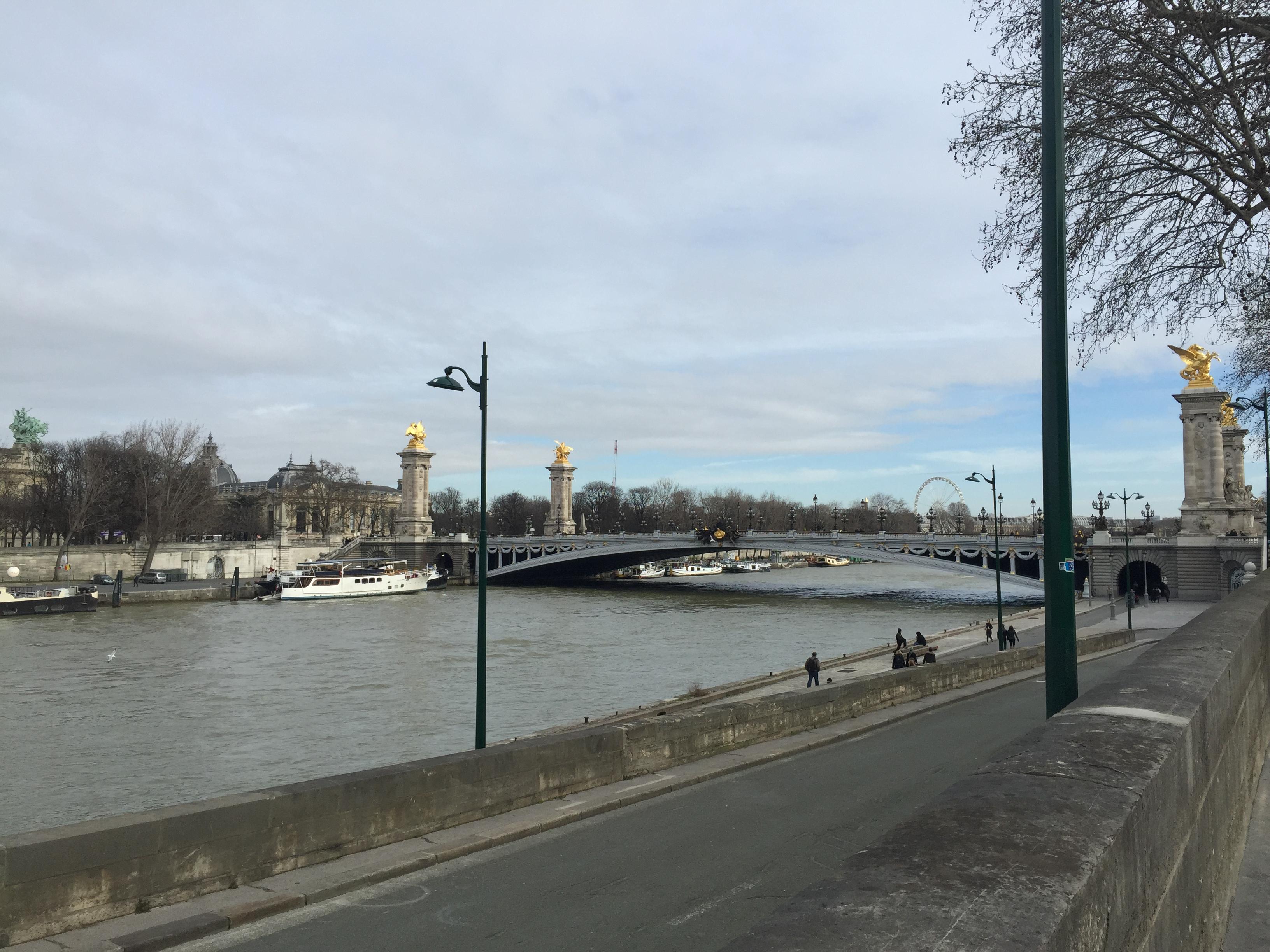 Вид на мост Александра III и набережную Сены.
